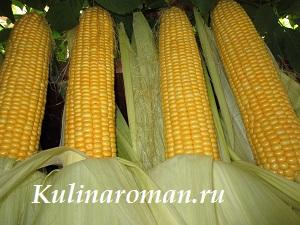 как варить сахарную кукурузу