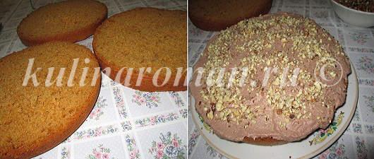 medovyj-biskvit