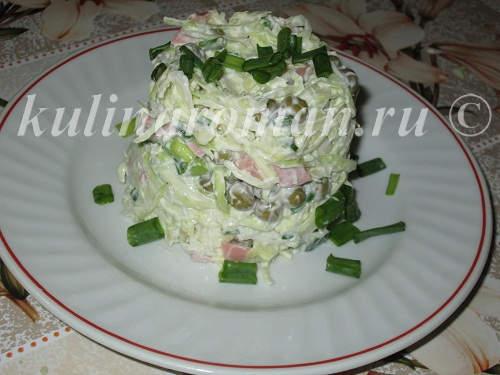 salat-dnestr