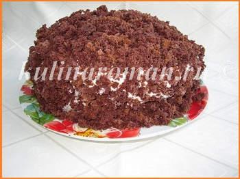 tort-norka-krota