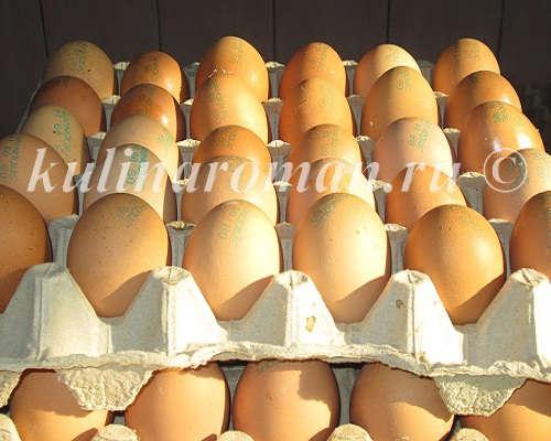 куриное яйцо полезные свойства