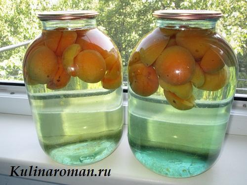 Как приготовить абрикос с добавлением спирта на зиму пить кофе со спиртом