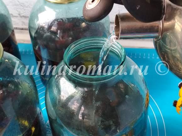 как приготовить компот из ежевики